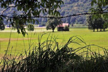 ~売れない土地どうする? 売却、買取り、寄付、譲渡~ 広島県内の土地売却は広島不動産へ